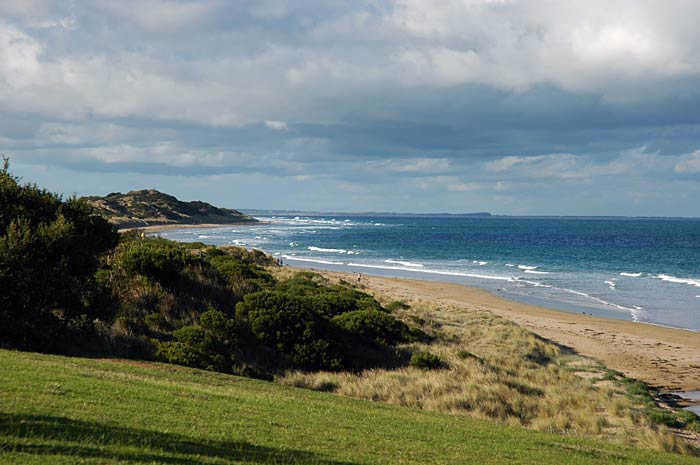 Surf FishingThere are many beaches around the surfcoast to throw in a line, depending on the conditions and the time of year, species range from salmon to seven gill sharks.